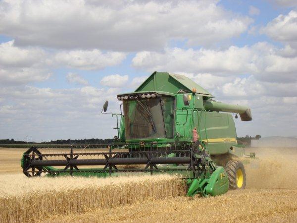 Moisson de blé dur dans le 45 2010