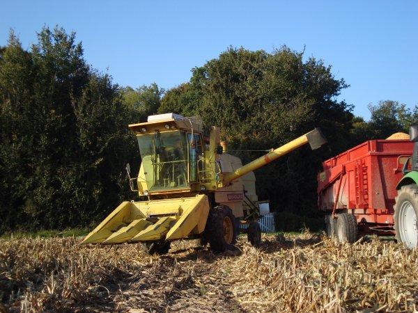 Moisson de maïs chez mon voisin 2010