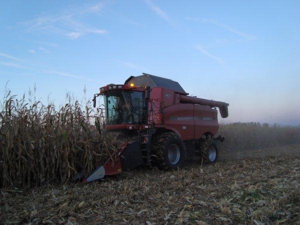 Moisson de maïs dans le 45 2010