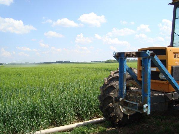 Irrigation dans le 45 2011
