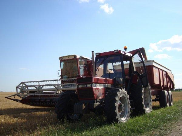 Moisson de blé tendre chez un ami dans le 45 2011
