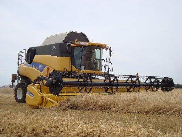 Moisson de blé dur dans le 45 2011