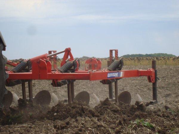 Préparation du sol dans le 45 2011