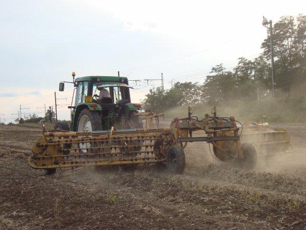Andainage d'haricots rouges dans le 41 2011