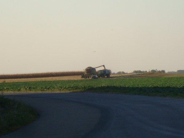 Photos du 45 2011