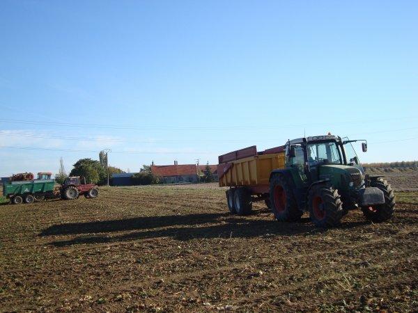 Arrachage de betterave à sucre par une ETA dans le 45 2011