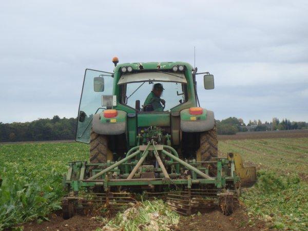 Arrachage de betterave à sucre dans le 45 2011