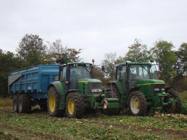 Arrachage de betterave à sucre  2011 dans le 45