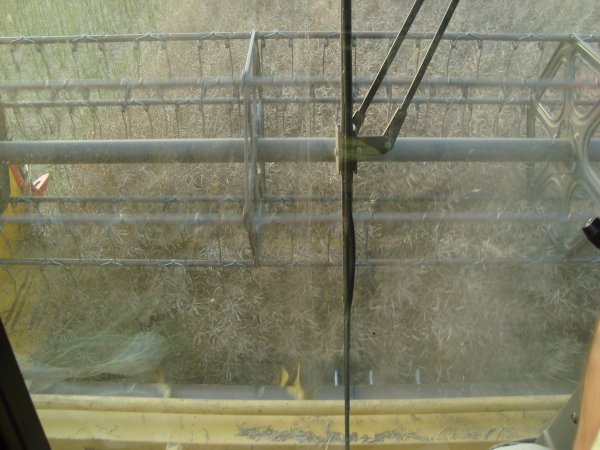 Moisson de colza 2012 chez mon voisin