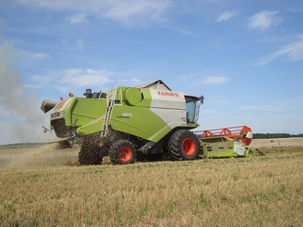 Moisson de blé tendre 2012 dans le 45