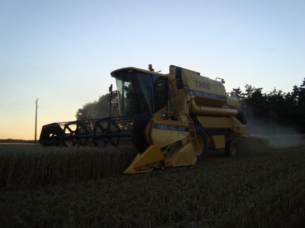 Moisson de blé tendre 2012 chez mon voisin