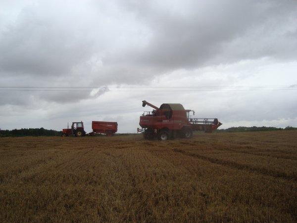 Moisson du blé dur 2012 dans le 45