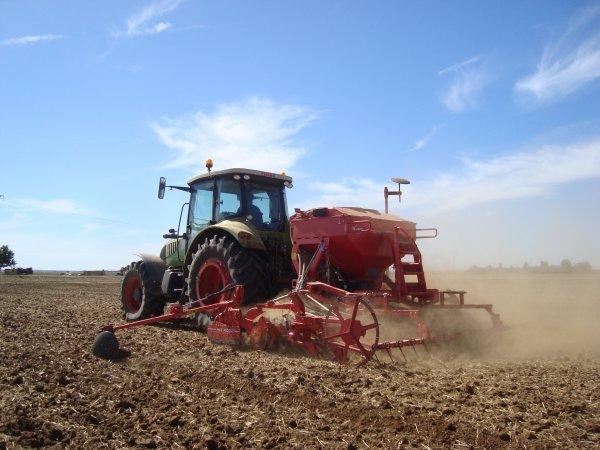 Semis de colza 2012 dans le 45