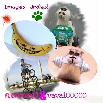 Images drôles! (en collabo avec flofolie99!)