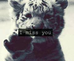 I Miss You ♥