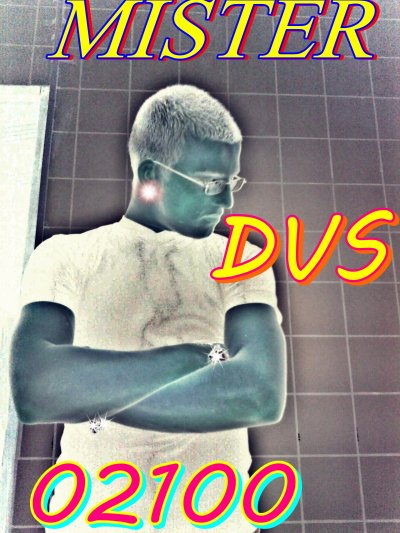 OFFICIEL  MISTER  DVS
