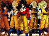 les transformation de sangoku
