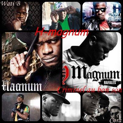 montage H-magnum