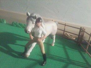 Un nouveau cheval pour Justine