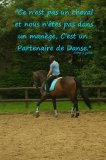 Photo de MyFantasticHorse