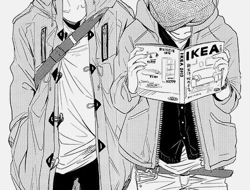 Projet D, IKEA