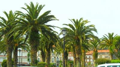 ~Espagne~