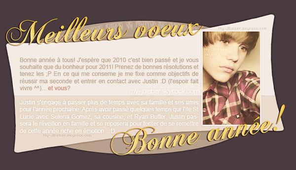 BONNE ANNEE 2011 :D