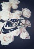 Photo de Musique771