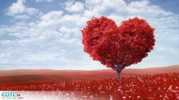 bonne st valentin a tous