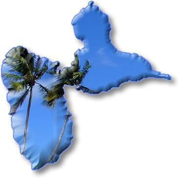 Moi je viens de la Guadeloupe et vous?
