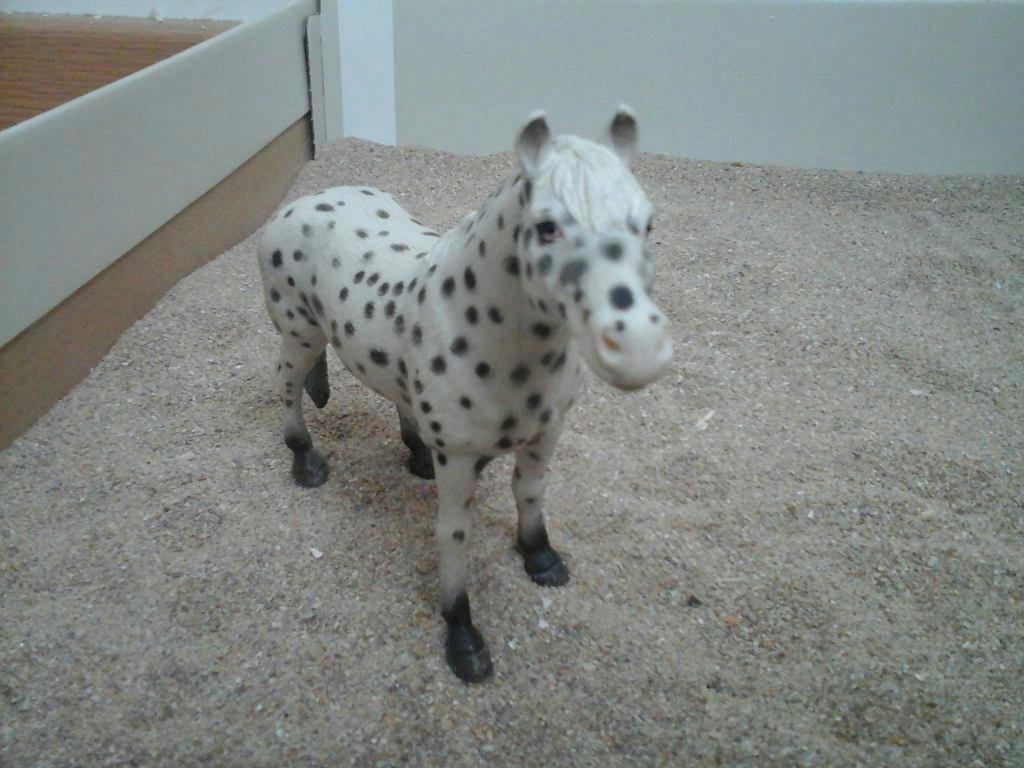 Présentation de mes chevaux schleich (2)