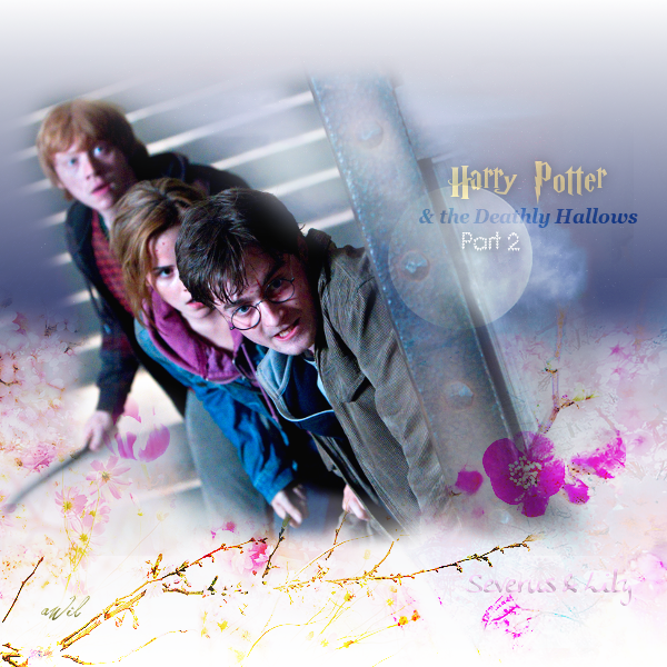 Harry Potter & the Deathly Hallows, Part 2