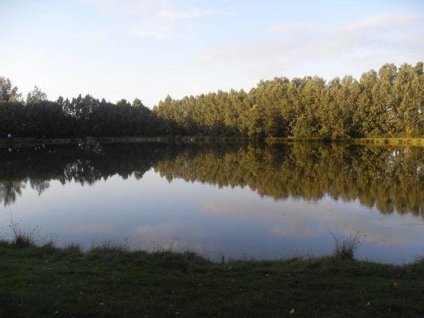 étang du hérisson (communale).