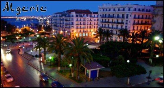 Algérienne tellement Fière que tu ne pourras jamais m' enlever le Sourire !  I ♥ Bleiidarde Power  . . D J A Z A ii R i A - B L K - R P Z T . S K Y R O H F F . C O M  . .  I ♥ Bleiidarde Power    De Dos 0u De FaCe , Les AlgeriienS On Tjs La ClaSs !