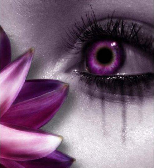 Lilas roux