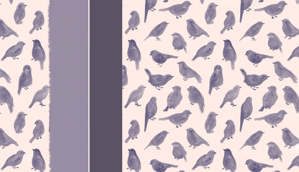 "Habillage n°2 : "" PurpleBirds """