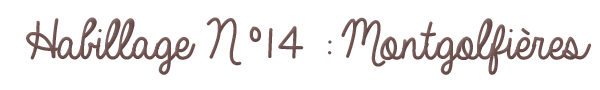Habillage N°14 : Montgolfières