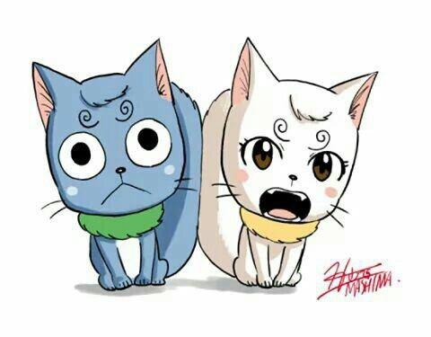 mes amis les chats