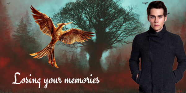Commande - Avatar & Bannière - Losing your memories