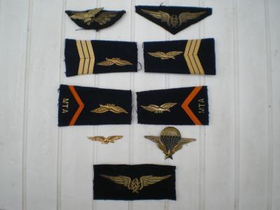 divers insignes arm e de l 39 air ma collection d 39 objets et d 39 uniformes militaire. Black Bedroom Furniture Sets. Home Design Ideas