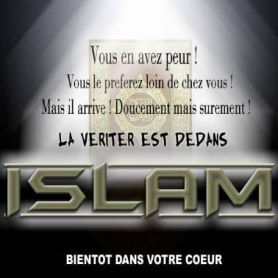 que veut dire islam au nom d 39 allah le tout mis ricordieux le tr s. Black Bedroom Furniture Sets. Home Design Ideas