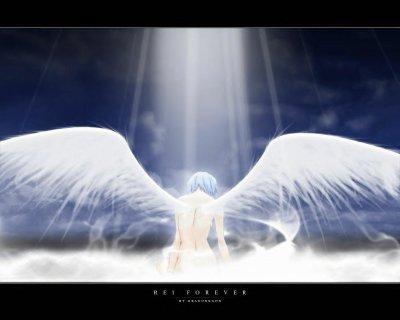 Mon ange c'est aujourd'hui que tu prend ton envole vers la lumière. Sache que je t'aime et je suis près de toi veille sur nous et ceux qui t'aime au revoir Allan mon amour je t'aime.