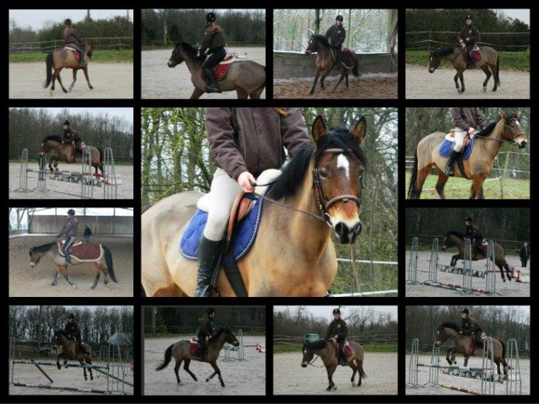 Mes séances (janvier 2013)