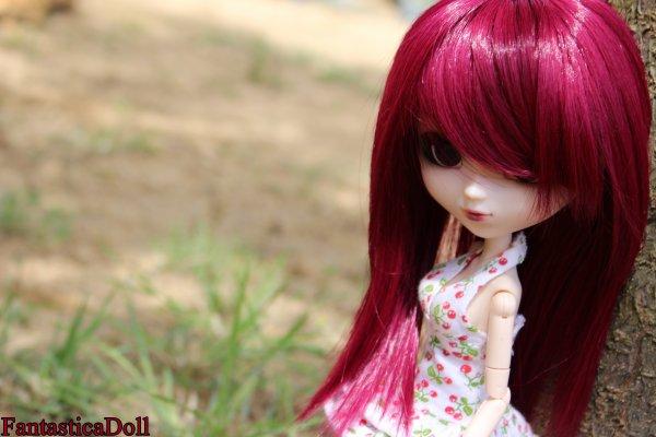 Présentation de mes dolls: