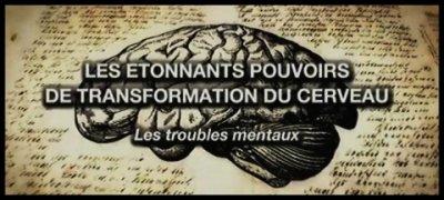 Les étonnants pouvoirs de transformation du cerveau