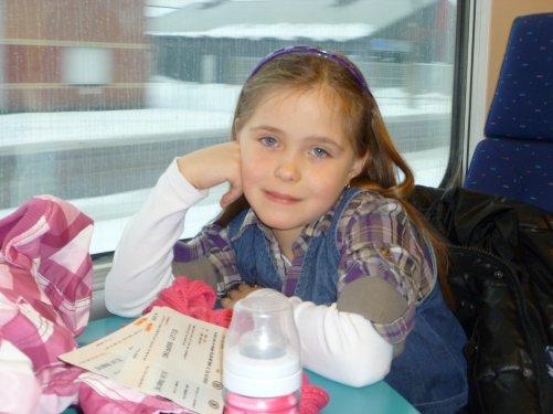 PETIT VOYAGE EN TRAIN LE 31.12.2010 ........