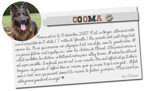 Présentation de Cooma.MARRAINE - MARRAINE ♥