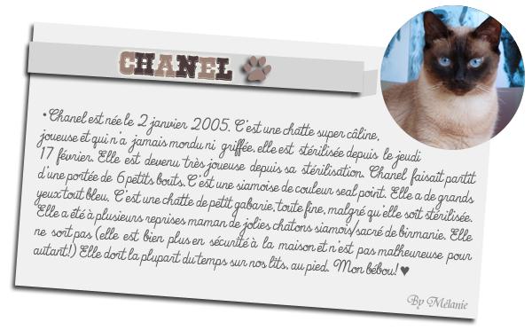 Présentation de Chanel. MARRAINE - MARRAINE ♥