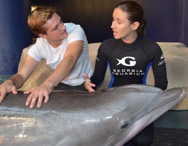 Josh rendant visite aux dauphins (10-10-12).