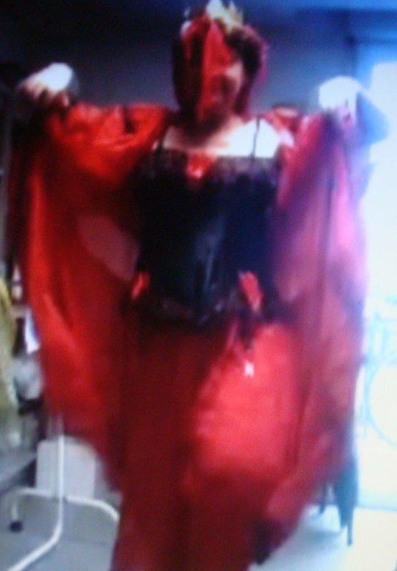 Tours 014 Carnaval Reine des Reinettes 2014